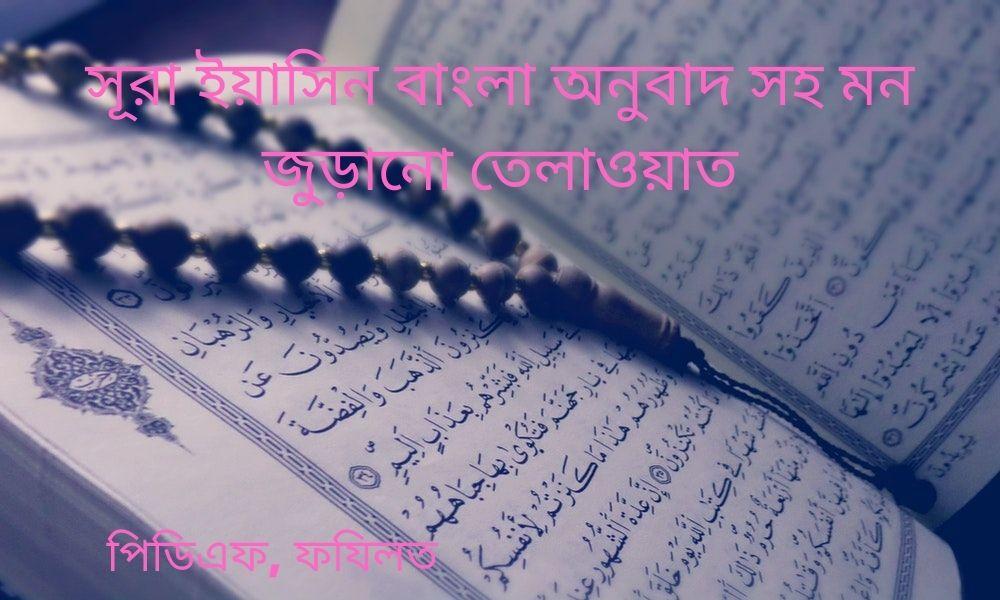 surah yassin recitation